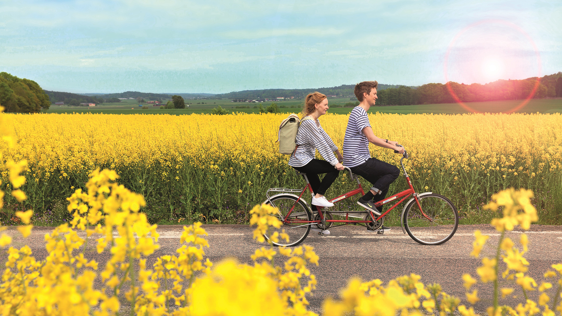 Nainen ja mies polkevat tandempolkupyörällä keltaisen pellon reunassa.